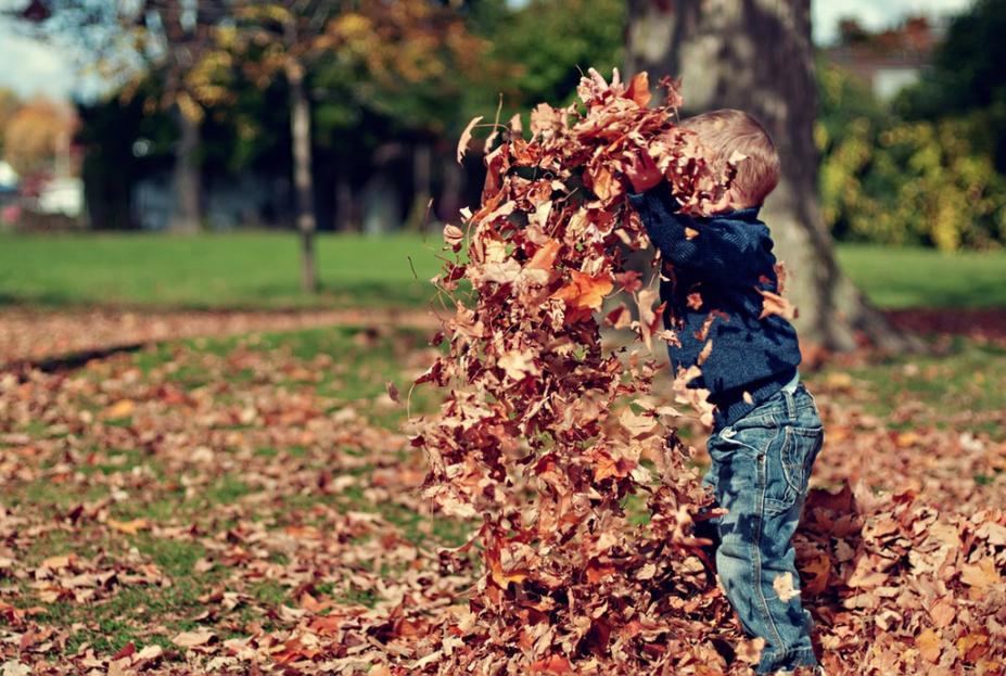 dziecko bawiące się liśćmi